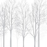 木の壁紙,木のクロス,自然風景の壁紙,おしゃれ壁紙