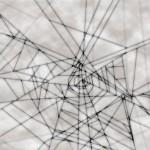 蜘蛛の巣のデザインクロスのバー