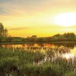 KP-0025  夕日と金色の川