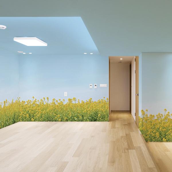菜の花の壁紙