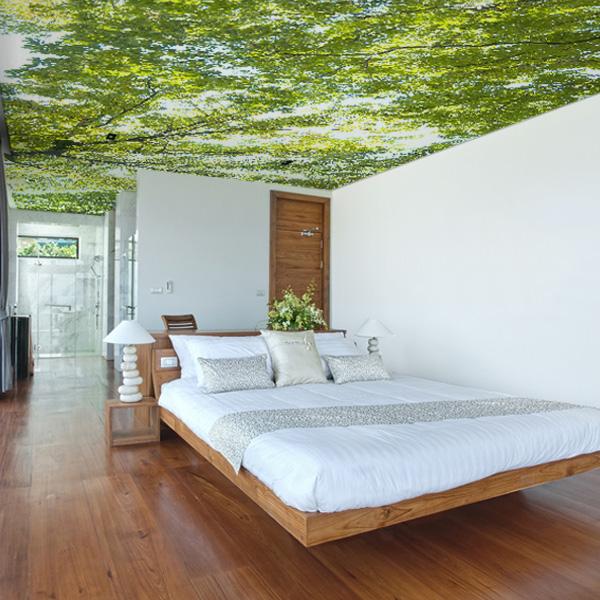 天井の壁紙 森の壁紙 木漏れ日の壁紙