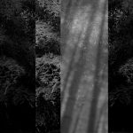 竹の和モダンなcool japan 銀色壁紙