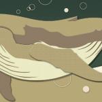 KPO-0073   夢クジラ