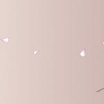 KN-0069   花の道