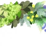 KN-0067   花々