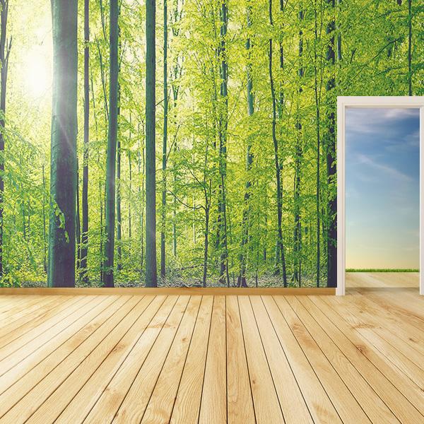 森の壁紙 木々の壁紙 自然の壁紙
