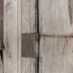 古木の壁紙