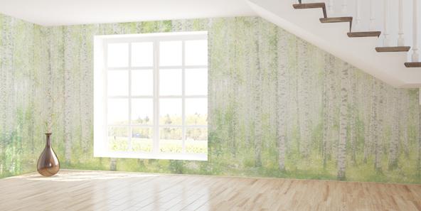 森の壁紙で緑の癒し空間へ病院にも