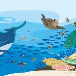 KPO-0084 海の生き物