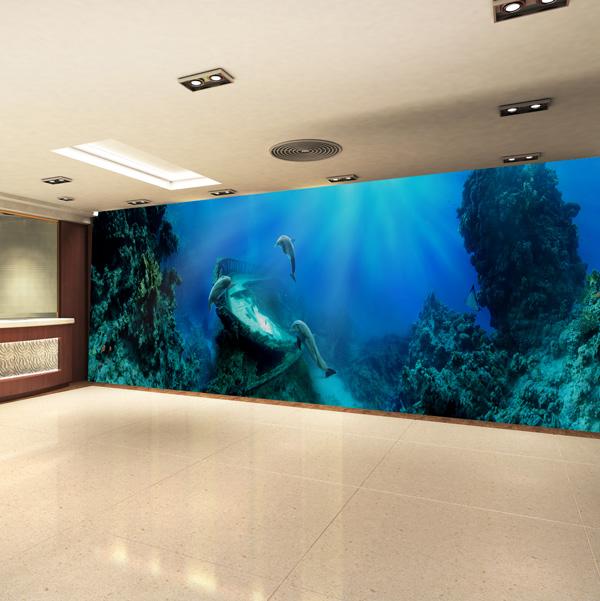 海の中のイルカの壁紙