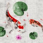 お洒落な和モダンの鯉の壁紙