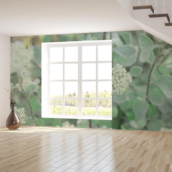 爽やかなグリーンのハーブの壁紙