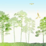 水彩の木々の壁紙