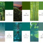 【100色クロス】グリーン系