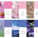 【100色クロス】ピンク・パープル系