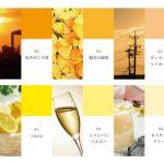 【100色クロス】オレンジ・イエロー系