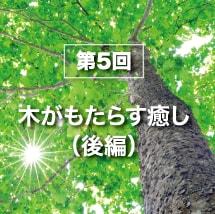 第5回木がもたらす癒し(後編)