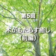 第5回木がもたらす癒し(前編)