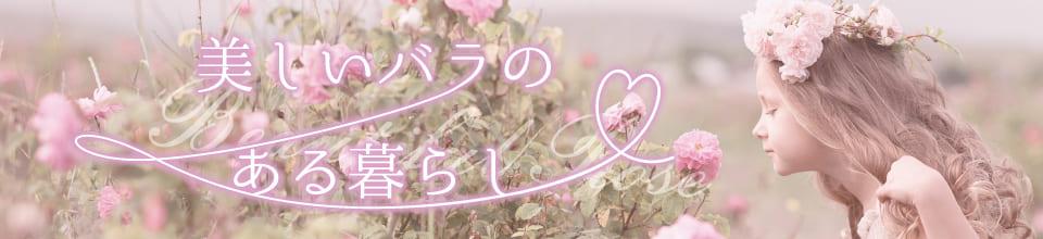 美しいバラのある暮らし