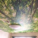 天井の壁外